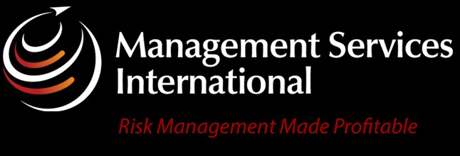 Management Services International